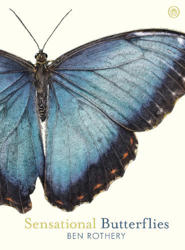 Sensational Butterflies by Ben Rothery