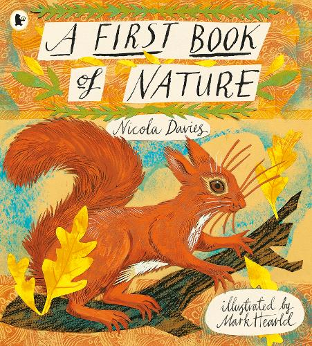 A First Book of Nature by Nicola Davies - a great reception book for activities